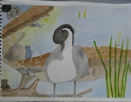 duckart