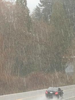 downpour101.png