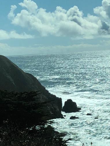 Oceanshoreline.png