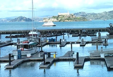 Pier39marinaSF.jpg