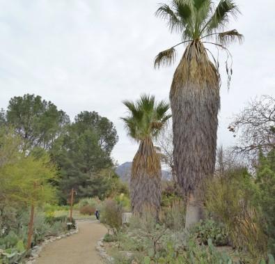 Santa Ana Botanical