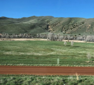 dimpledgreenhills
