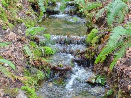 smallwaterfall