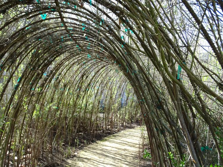 branchtunnel