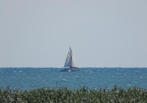 Lake Huron sail