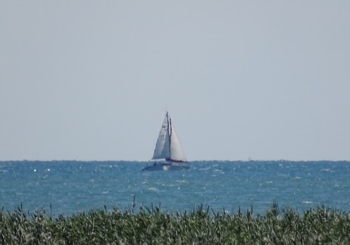 Lake Huron sail