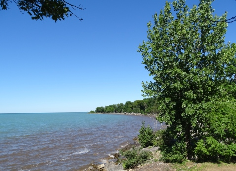 Lake Huron Shore