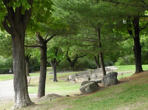 Hog's Back Park rocks_trees