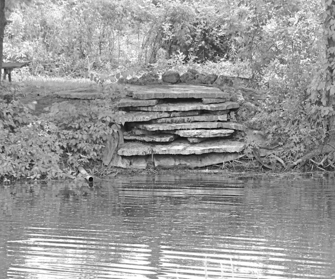 TroutHavenpond bw