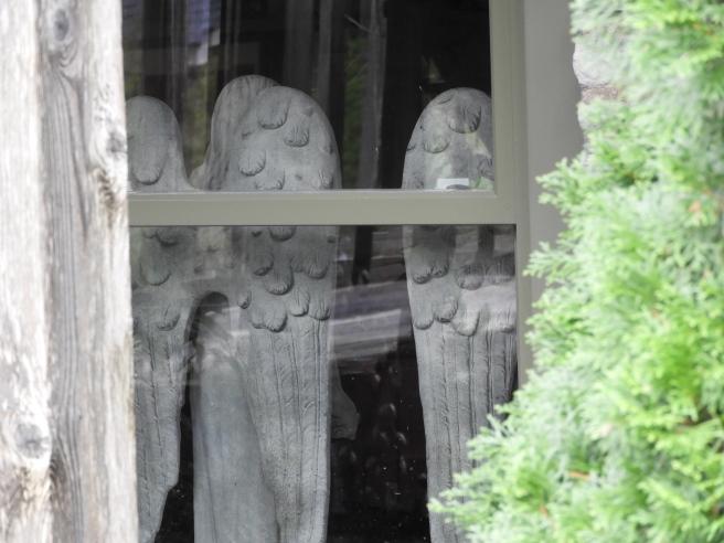 window with wings.jpg